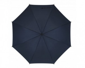 Fibreglass stick umbrella...